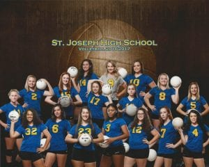 2016-17-volleyball-team